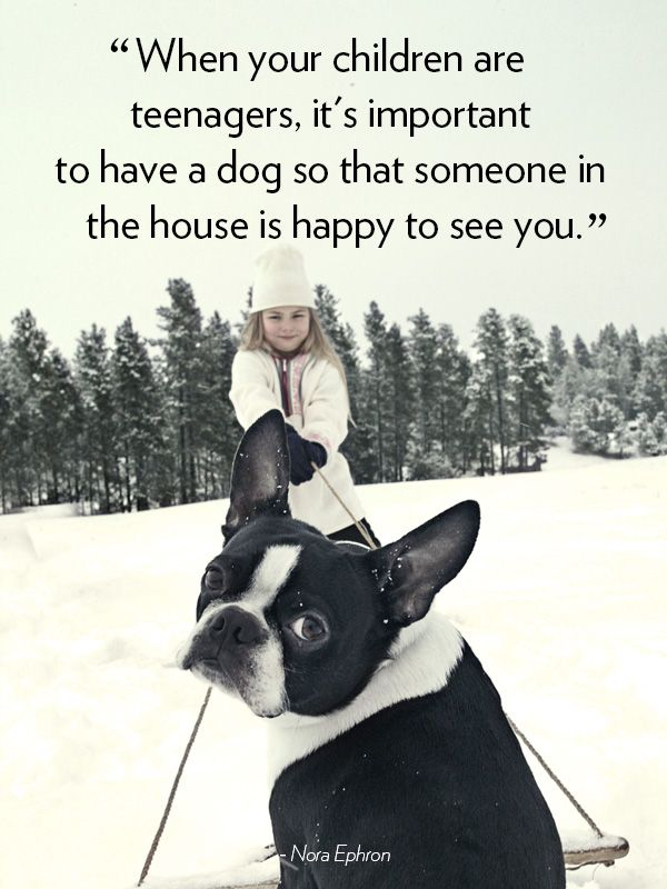 16 Dog Quotes That Will Melt Your Hear