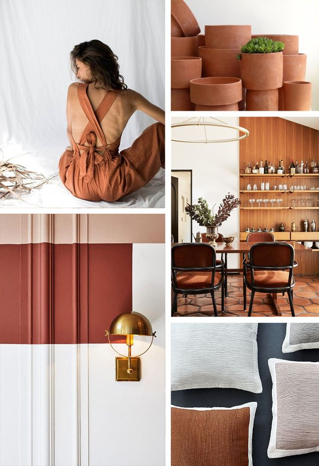 And The Winners Of The Colour Of The Year For 2019 Are Coty 2019 In 2020 Sherwin Williams Colors Terra Cotta Paint Color Sherwin Williams Paint Colors