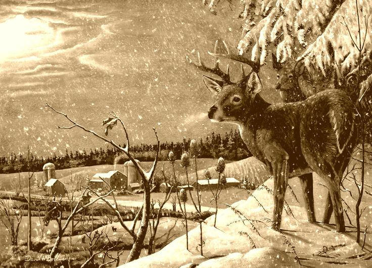 david_h_bollman_deer_winter_snow_village_art_vintage_hd-wallpaper-346022.jpg (2312×1667)