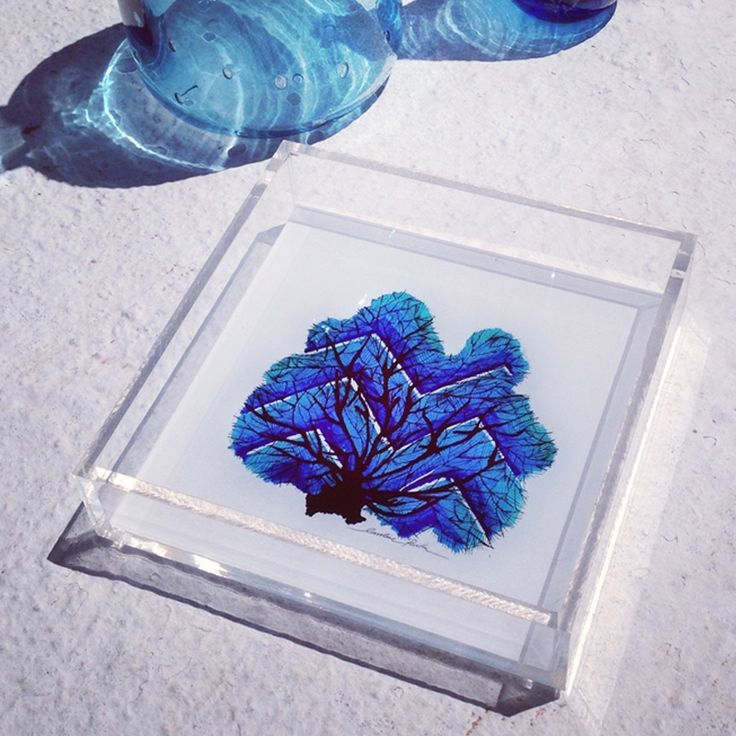 blue coral medium tray from the NEW summer art print collection by Caroline Rovithi (www.carolinerovithi.com)  Inspired by the work of ocean...