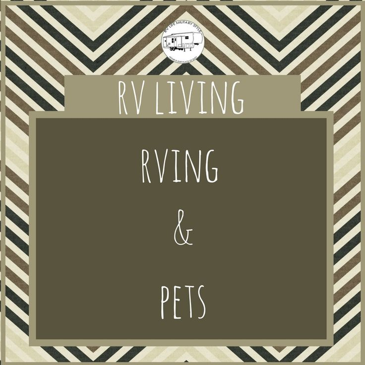 Find out how my husband and I manage to live in a 5th wheel RV with two dogs and three cats. And how everyone is happy and gets along.