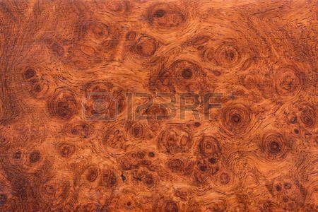 текстура: Макро Ormosia текстура древесины, Афзелия xylocarpa (Kurz) Craib, Leguminosae-цезальпиниевые (Fabaceae)