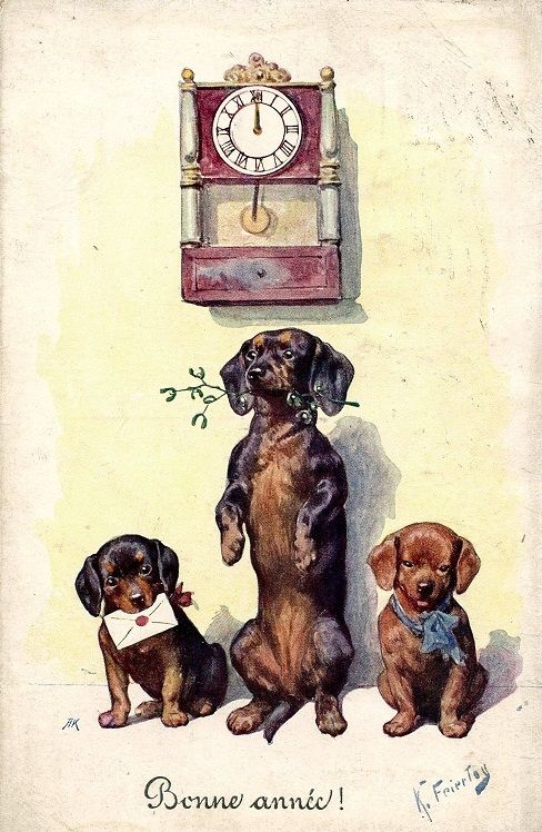 illustration by Karl Feiertag, Dachshund