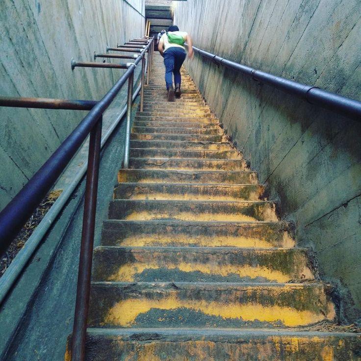 山頂間近でまさかのこの急な階段は最後の しれん #ハワイ #ホノルル #ダイヤモンド #ダイヤモンドヘッド #秋 #世界 #人気スポット #観光 #旅行 #cocoacana #ここあかな