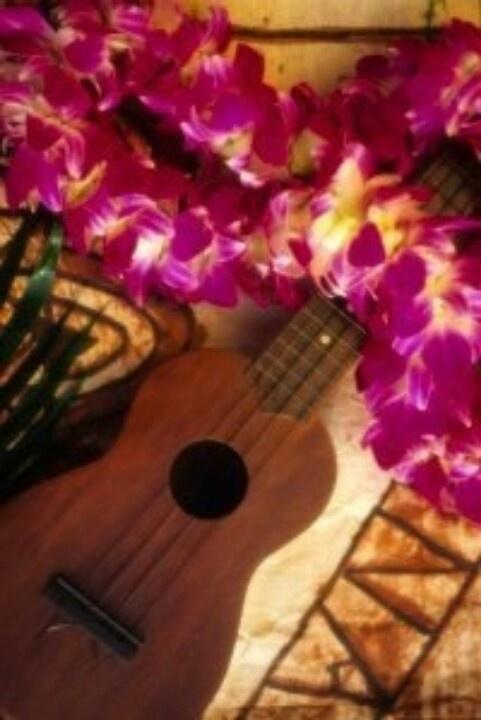 133 best wailuku ukulele images on pinterest music ed guitars and ukulele must learn fandeluxe Image collections