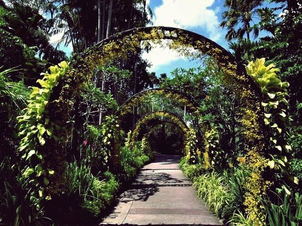 32 Schonsten Botanischen Garten Der Welt Botanischer Garten Traumgarten Offentlicher Garten