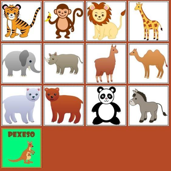 ZOO http://www.pexeso.net/spusteni-hry?code=02BED&lang=cs