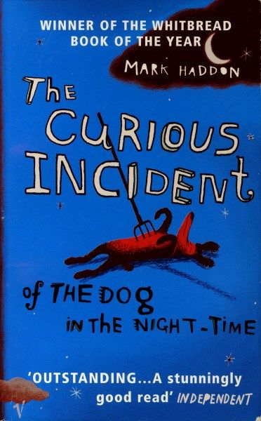 Curious incident essay
