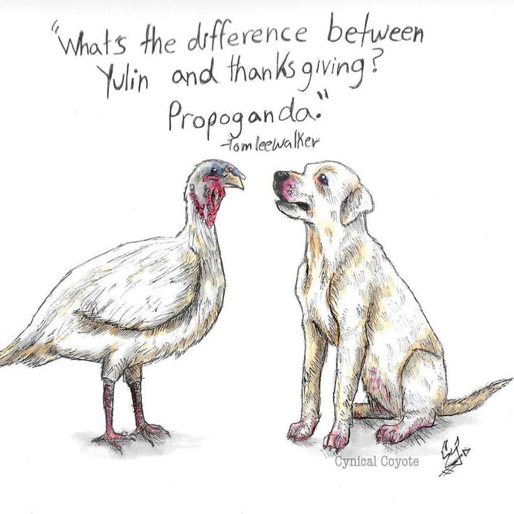 difference between yulin and thanksgiving? propaganda
