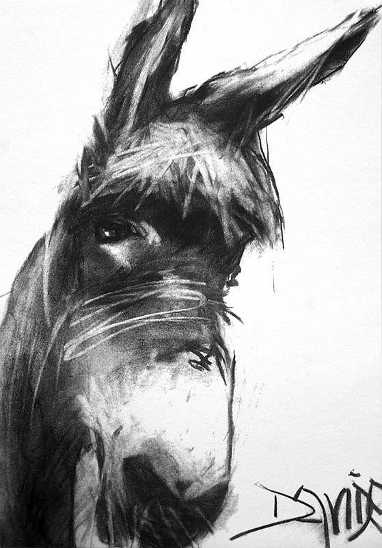 Valerie Davide Prints