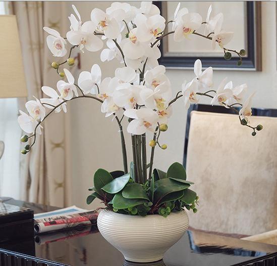 Arranjo de flor com folhas artificiais de orquídeas Phalaenopsis real toque orquídea DIY organizar flor no vaso
