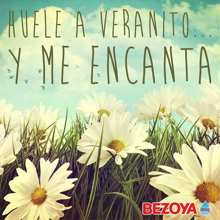 Huele a veranito y me encanta. #bezoya, verano, vacaciones, flores, campo, naturaleza, agua, mineral, natural, summer