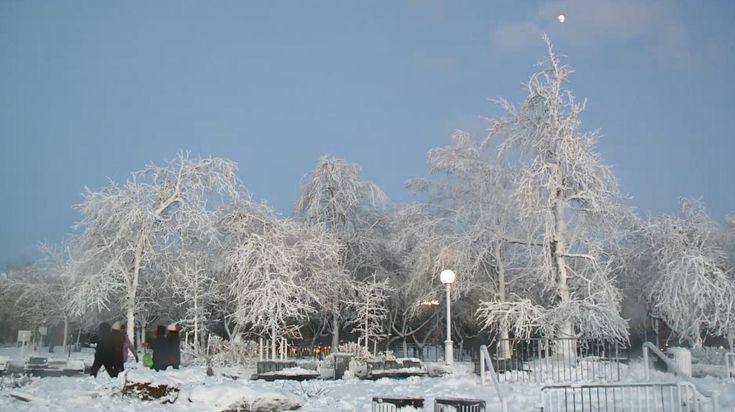 Winter storm forecast to dump snow from Florida to Carolinas