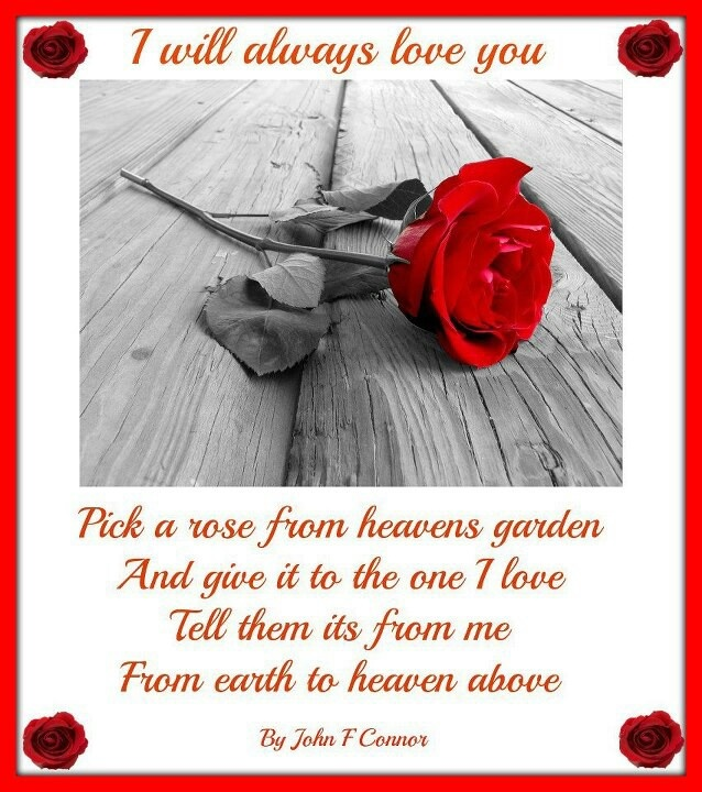 Missing My Husband At Christmas Quotes: I Will Always Love You My Husband I Miss You More Every