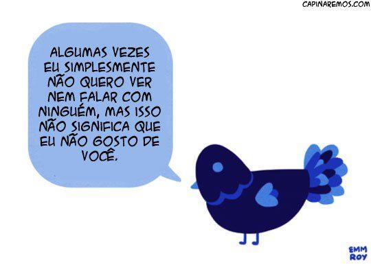 Facebook Twitter WhatsApp Google+