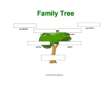 family tree template word 2007 - a simple full color three generation family tree with