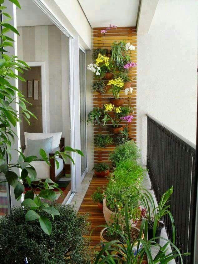 Balcon / plantas / exterior - #balconplantas