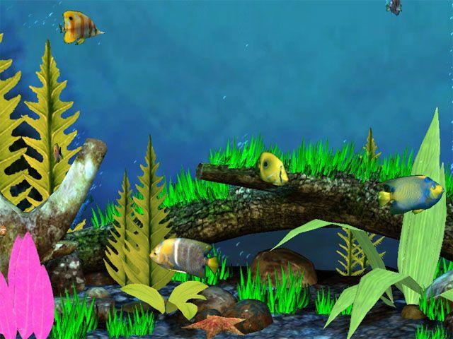3D Fish Screensaver Free Virtual Fish Aquarium Download
