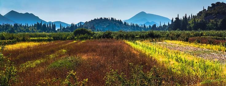 Dalmatia in Autumn