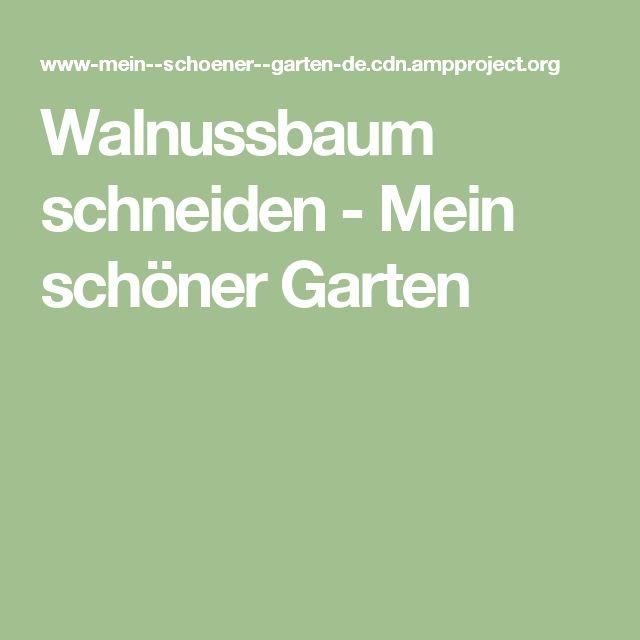 Walnussbaum schneiden - Mein schöner Garten