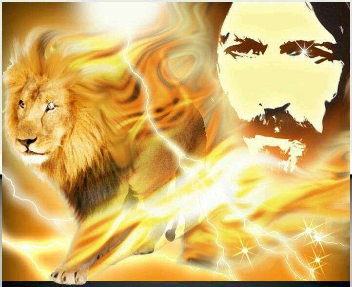 378 best images about LION OF JUDAH on Pinterest | A lion ...