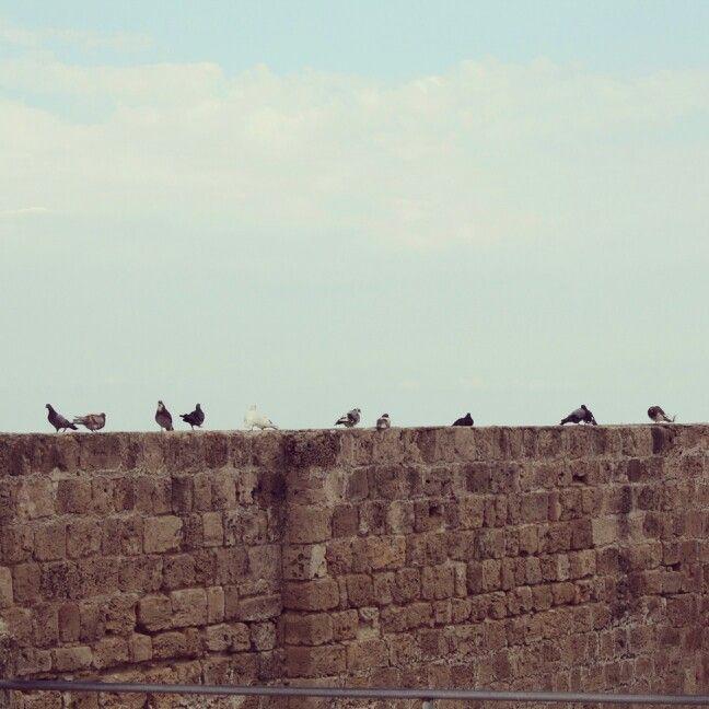 Girne kalesi, Kıbrıs, İstanbul, Türkiye, İstanbul, kale, sur