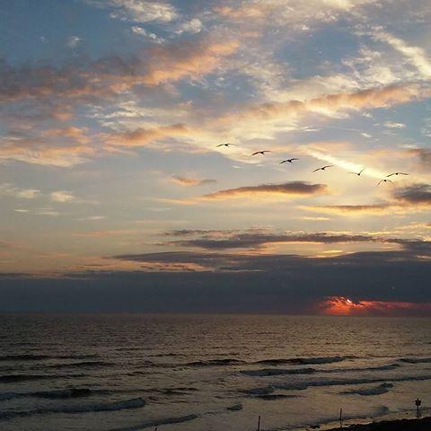 A New Smyrna sunrise! . . . #newsmyrnabeach #nsb #sunrise #florida #floridachristmas #ocean #atlanticocean #sky #sunrise #birds #goodmorning #morning #travel #travelblogger #sweethomeindianatravels #sweethomeindiana #nofilter #December #vanillasky #beach #morningsky #coastalliving #vacation