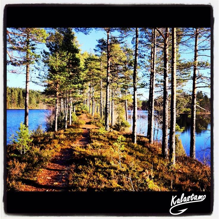 Nice Trail - www.kalastamo.com - Iso-Melkutin