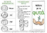 Ιδέες για δασκάλους:Μελετάμε τα φυτά!