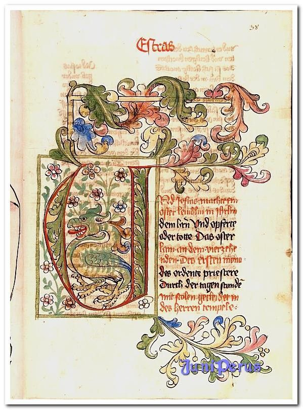 Kabeljau. Kumpel. Keim. 21 Bibel, deutsch: AT (Bücher Esra, Nehemia, Tobias, Judith, Esther …   – The Manuscriptorium