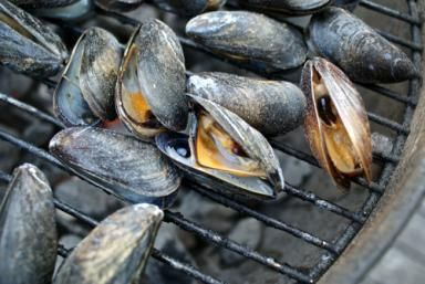 See How Easy It Is to Pop Mussels On the Grill: Grilled Mussels