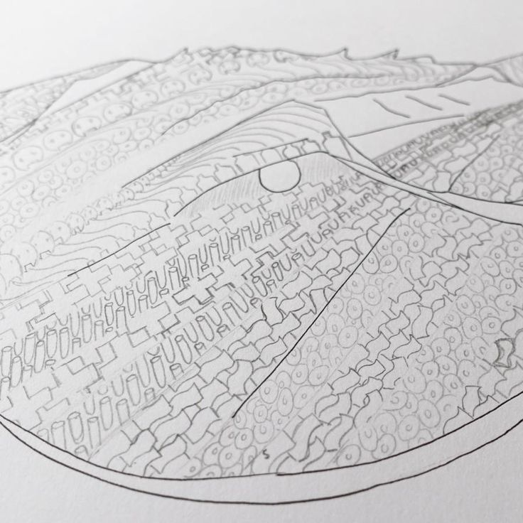 Working on this living fossil  hope ppl can understand the  meaning in the work . . . . . . #art #sydney #artist #artsy #gallery #illustration #draw #drawing #sketch #sketchoftheday #creative #cute #instaart #animal #animallovers #ocean #crab #horseshoe #artoftheday #blachkandwhite #doodlesofinstagram #doodle #wild #life