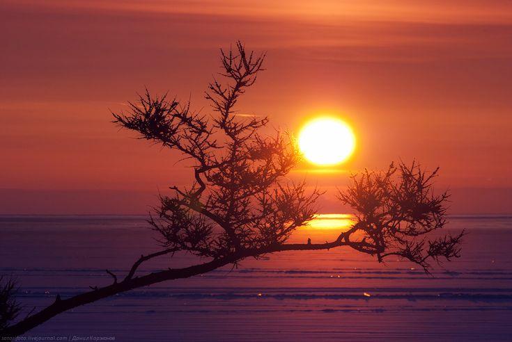 Тонкие струны Байкала или 400 км на коньках! Часть 1: Бугульдейка-Ольтрек. | Интересный Мир: путешествия, туризм, психология, наука, техника, интересное в мире, юмор, история, культура