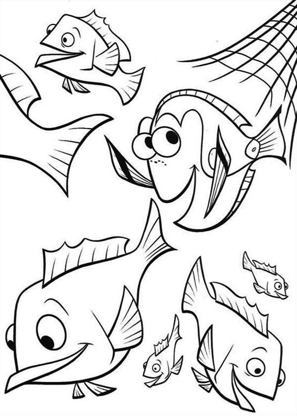 Finding Nemo Dory And Friends Coloring Pages For Kids Printable
