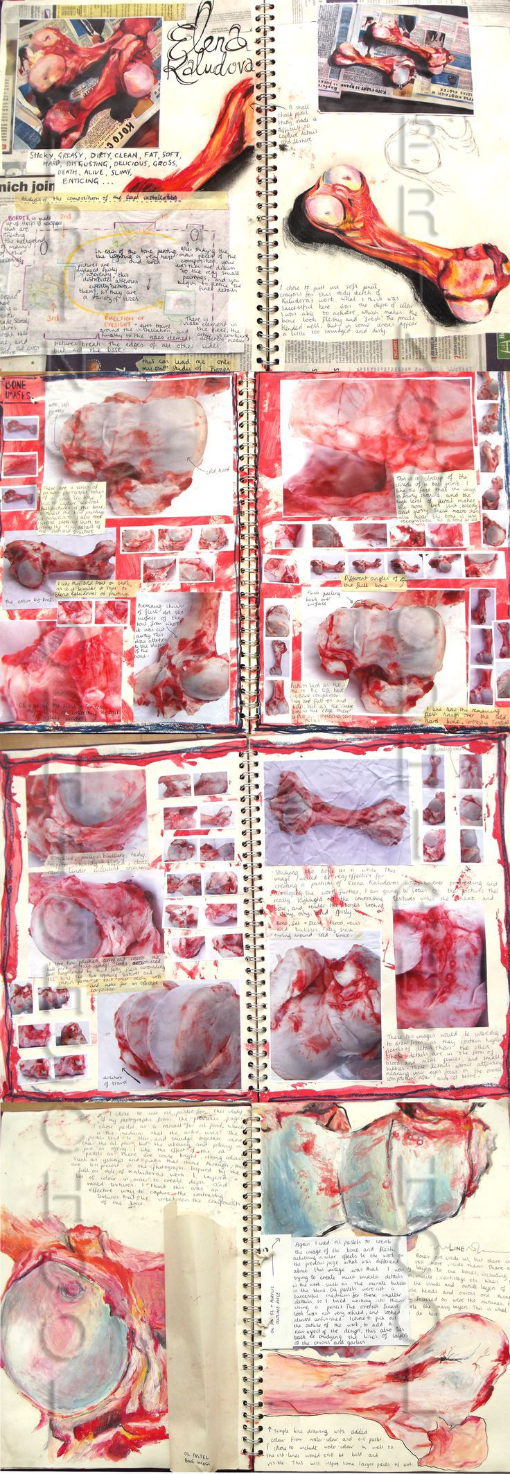 A2 ART - INSIDE,OUTSIDE,IN-BETWEEN Lauren NurseAO1,AO2,AO3,Development and sketchbook work- Bones- Springwood Highschool
