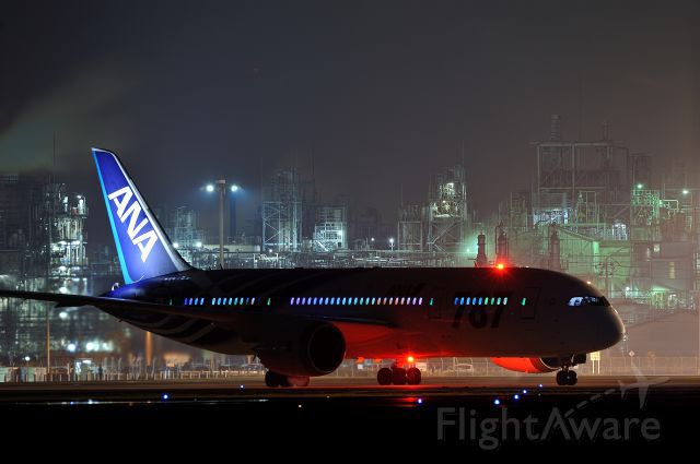 ANA Boeing 787-800               http://1502983.talkfusion.com