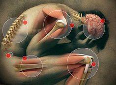 ЛЕЧЕБНЫЙ СУП, КОТОРЫЙ ПОМОЖЕТ ПРИ ФИБРОМИАЛГИИ. Сидячий образ жизни, к сожалению, стал одной из примет современного стиля жизни. С ним связаны многие болезни, одной из которых является фибромиалгия. Количество людей, страдающих этой болезнью, расте…