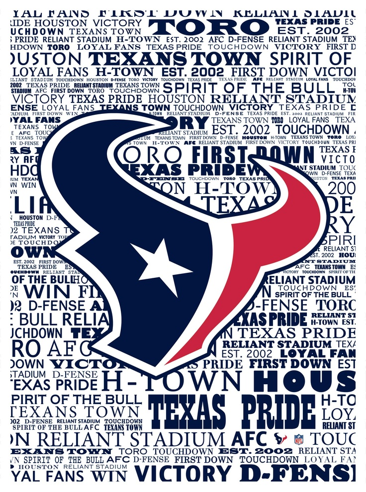 Houston Texans typography (Marmaxx)
