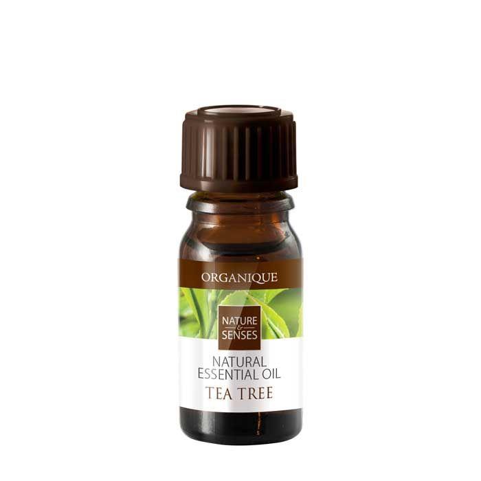 Olejek eteryczny Drzewko herbaciane