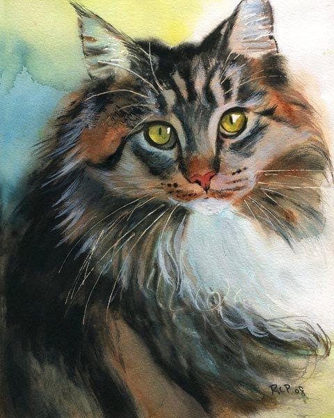 Maine Coon Tabby Cat Art Print of my Watercolor by rachelsstudio