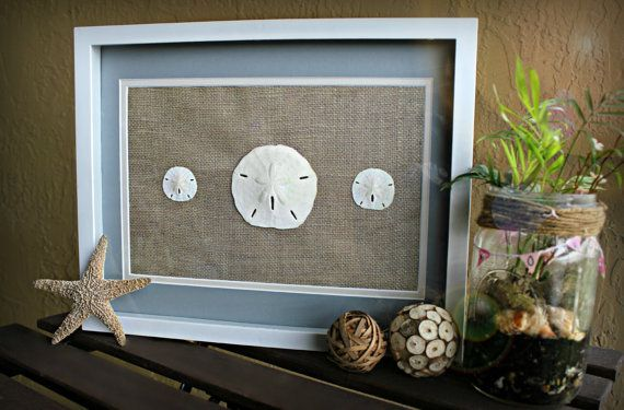 "Found on etsy.com    Sand Dollar Wall Art White Shadow Box 12""X15"" Frame Burlap and Blue Border Beach… In Stock • $55"
