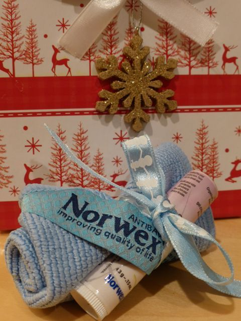 Vicki Wilken's Pinterest Norwex Board provided this gift idea. A Norwex Travel Cloth Enviro and a Norwex Lip Balm.