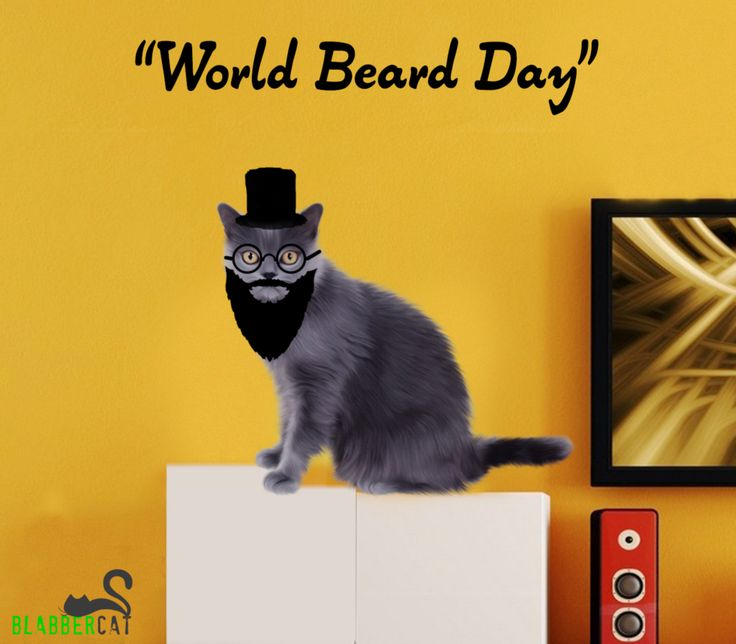 You call it a facial hair, I call it awesomeness escaping through my face!! World Beard Day!! Tag your boyfriend with his lovely beard and win gift hampers from team BlabberCat. ‪#‎contest‬ ‪#‎worldbeardday‬ ‪#‎hampers‬ ‪#‎selfies‬ ‪#‎giveaway‬ ‪#‎fashion‬ ‪#‎blogging‬ ‪#‎weekendvibes‬
