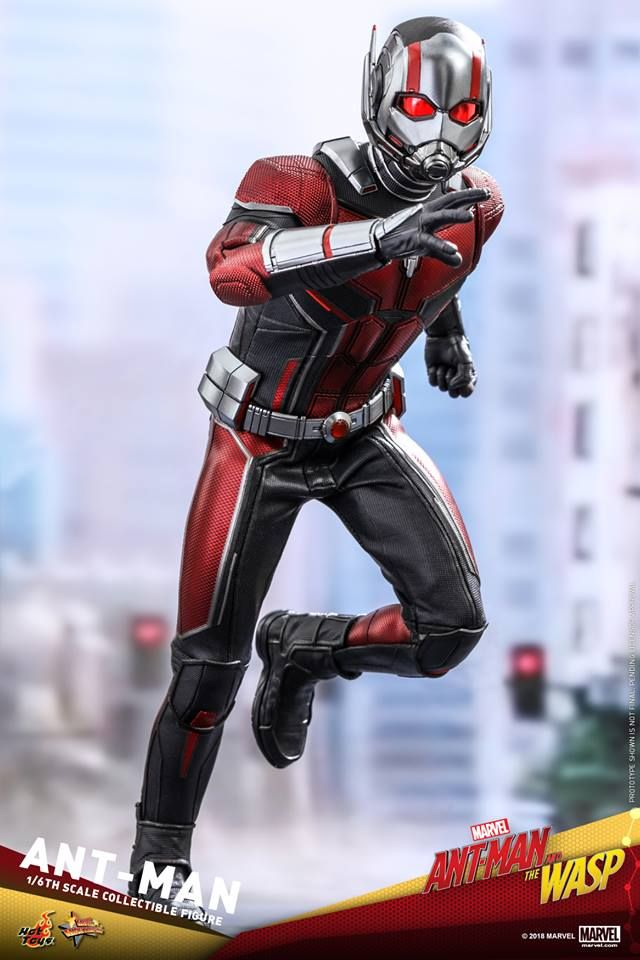 Hot Toys 1 6th Scale Ant Man Collectible Figure Ant Man And The Wasp Marvel Superhero Posters Ant Man Ant Man Scott Lang