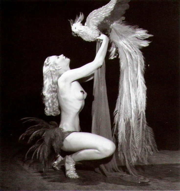 Lili St-Cyr - American burlesque - Wikipedia, the free encyclopedia