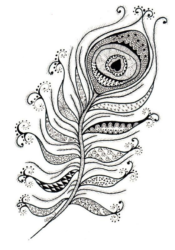 Peacock Feather Coloring Sheets Zentangle Also See The Category