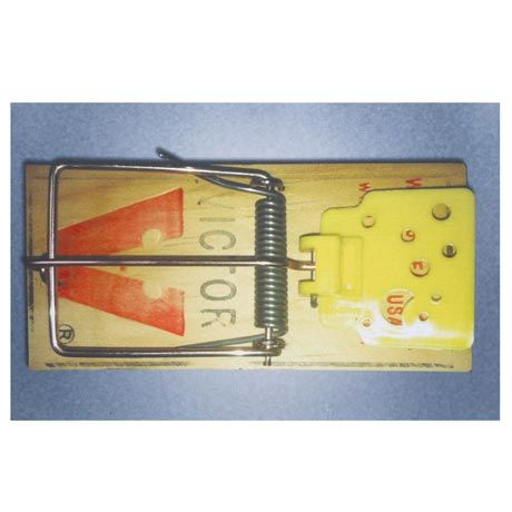 Funny Doormats Online India >> 116 best DOOR MATS images on Pinterest | Door rugs, Doormats and Door mats