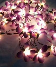 Orchid Garland Lights