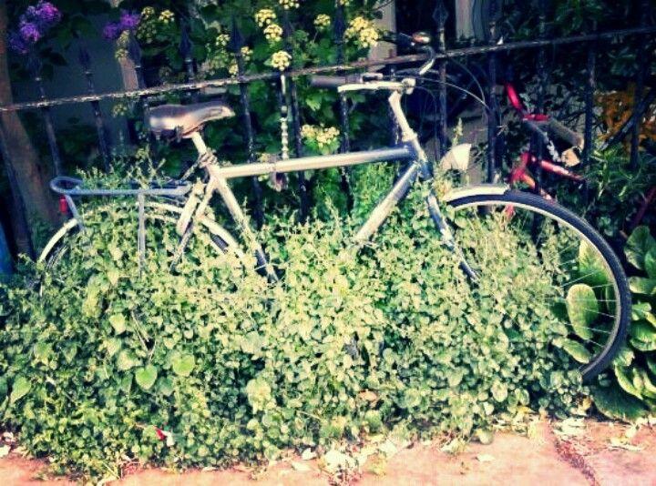Bike in kentish town