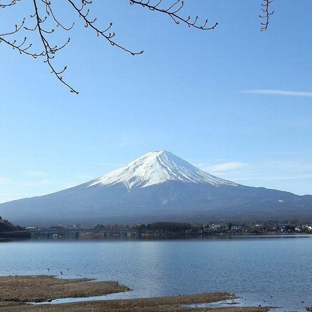 2017.4.9 Mt. Fuji -Lake Kawaguchiko * 天気悪いので、青空のここから富士山🗻(2月) 越谷をスタートし、都内を通って、横浜、江ノ島を回って、河口湖に🚶🏻🚶🏻🚶🏻 2月の写真なので、桜もまだ蕾でエダダケザクラと富士山のコラボ👍 この後、あっという間に雲が出てきて、富士山が隠れてしまったことを考えると、桜は無くても、富士山が綺麗に見えただけでも上出来か👌 恒例のYahooマップ計測では、ぐっと近くなり、富士山まで直線距離18km📐徒歩4時間30分🚶🏻 #ここから富士山🗻 at河口湖 . #河口湖 #富士山 #青空 #湖 #山 #世界遺産 #自然 #風景#日本 #kawaguchiko #mtfuji #mountfuji #worldheritage #bluesky #lake #mountain #nature #japan #scenery #instagramjapan #ig_japan #japan_daytime_view #ig_today #jp_gallery…